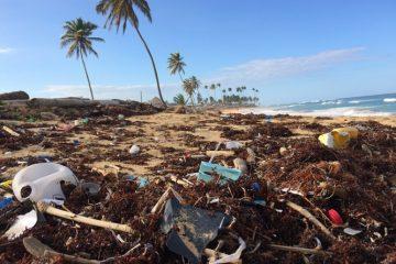 Ilha de Santa Luzia é poluída com plásticos de 25 países